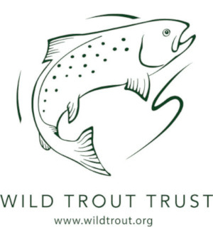 The Wild Trout Trust